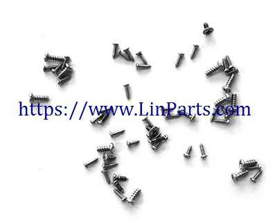 Lishitoys L6060 RC Quadcopter Spare Parts: Screw package set
